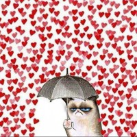 Valentines Day for Grumpy Cat