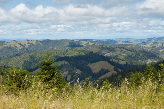The Wine Country from the West Peak of Mount Tamalpais
