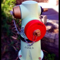 Fire Hydrant Repainted