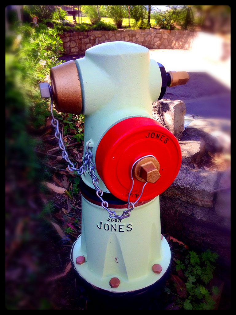 Sausalito Fire Hydrant Villain Still at Large