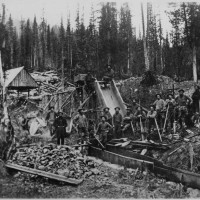 Miners During the CA Gold Rush