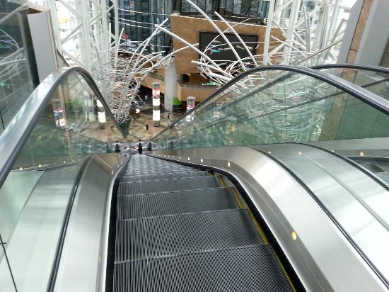 Imagine My Horror During this Escalator Ride…
