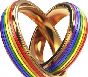Marriage Equality Wedding Rings