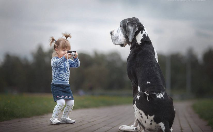 Adorable Photos of Large Dogs with Small Children