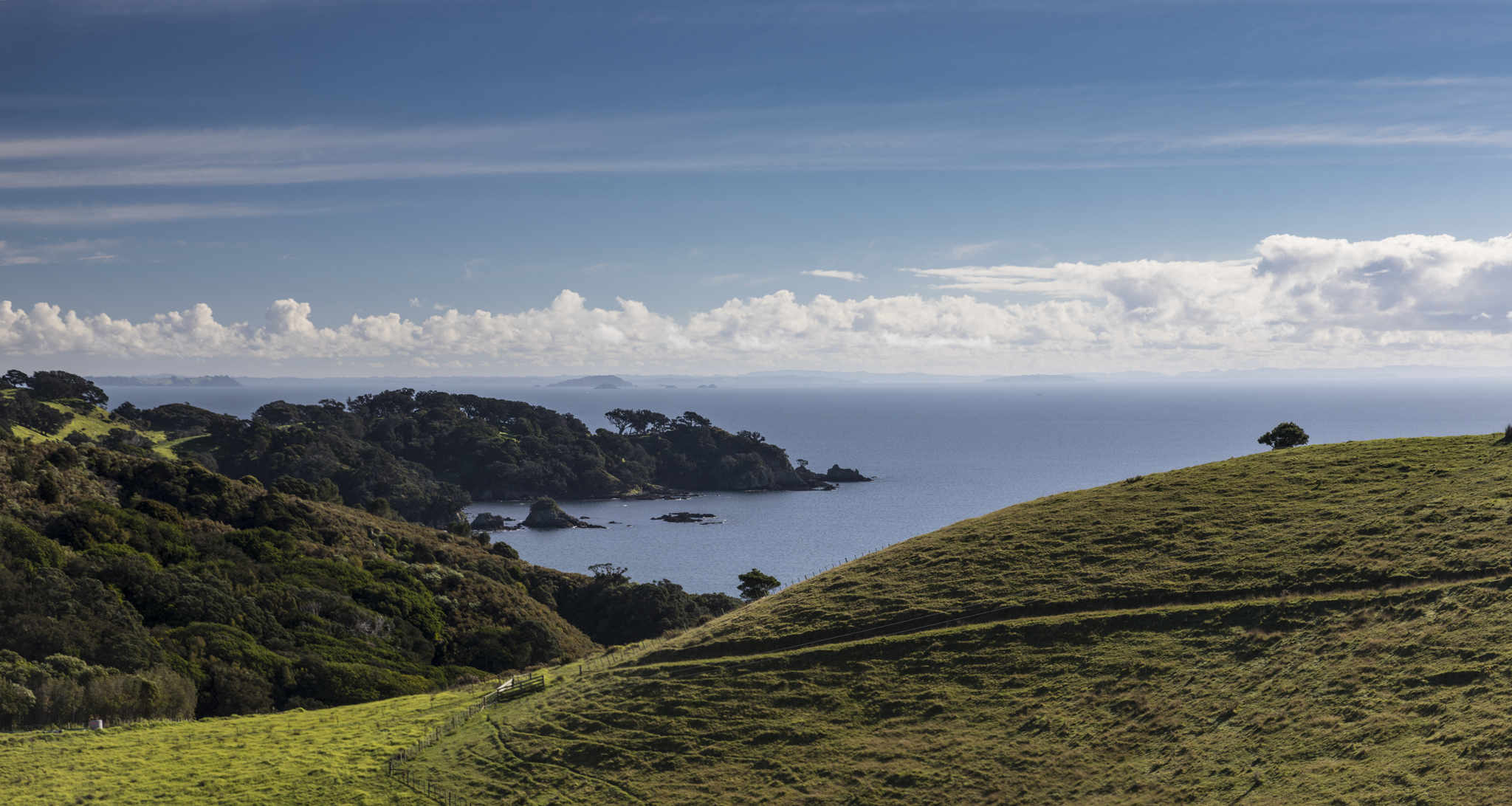 about waiheke island nz Tantalus estate is a premium winegrower situated in the heart of the onetangi valley on waiheke island the estate is situated amongst other reputable wineries within walking distance making the valley a great destination to spend the day.