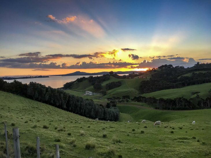Waiheke Island Sunset Facing Aukland in the Distance