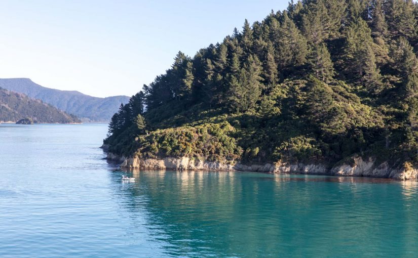 New Zealand '17: Day 07 – Wellington to Picton to Abel Tasman National Park (Wed)