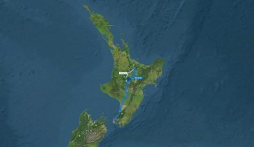 Route to Wellington