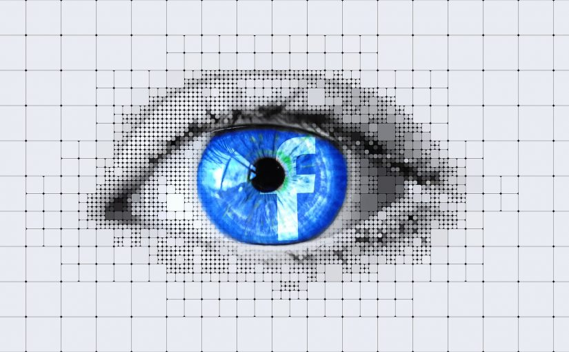 Facebook Eyeball Data