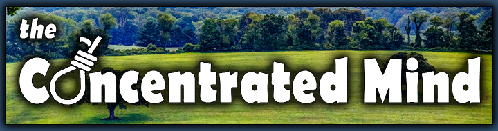 Concentrated Mind Banner