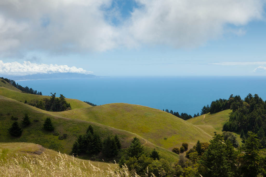 West Peak, Mount Tamalpais: Somehow I Just Knew…