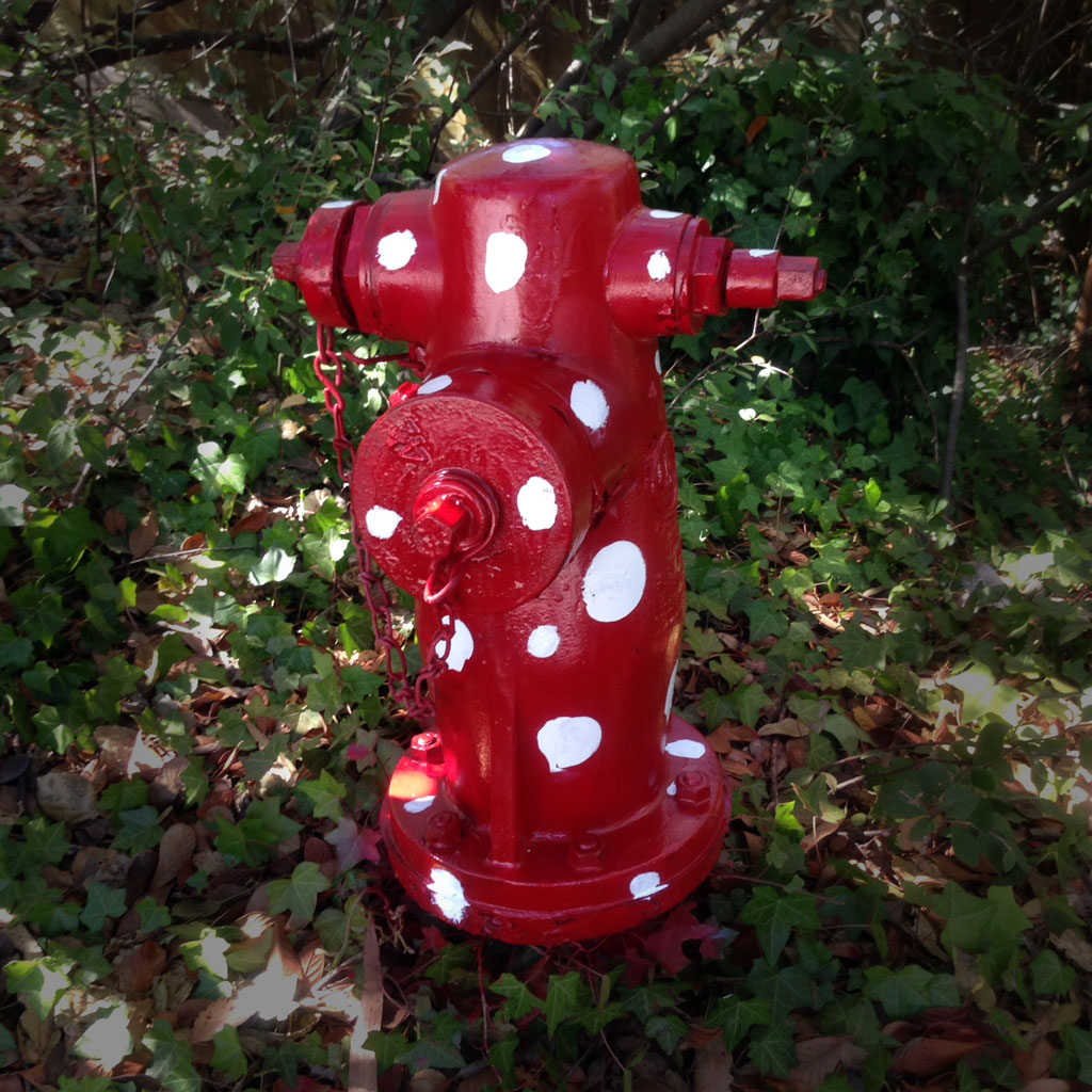 Sausalito Fire Hydrant Bandit Re-emerges!